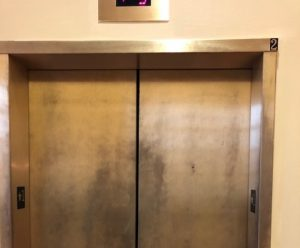 University Hall Elevators Dull finish