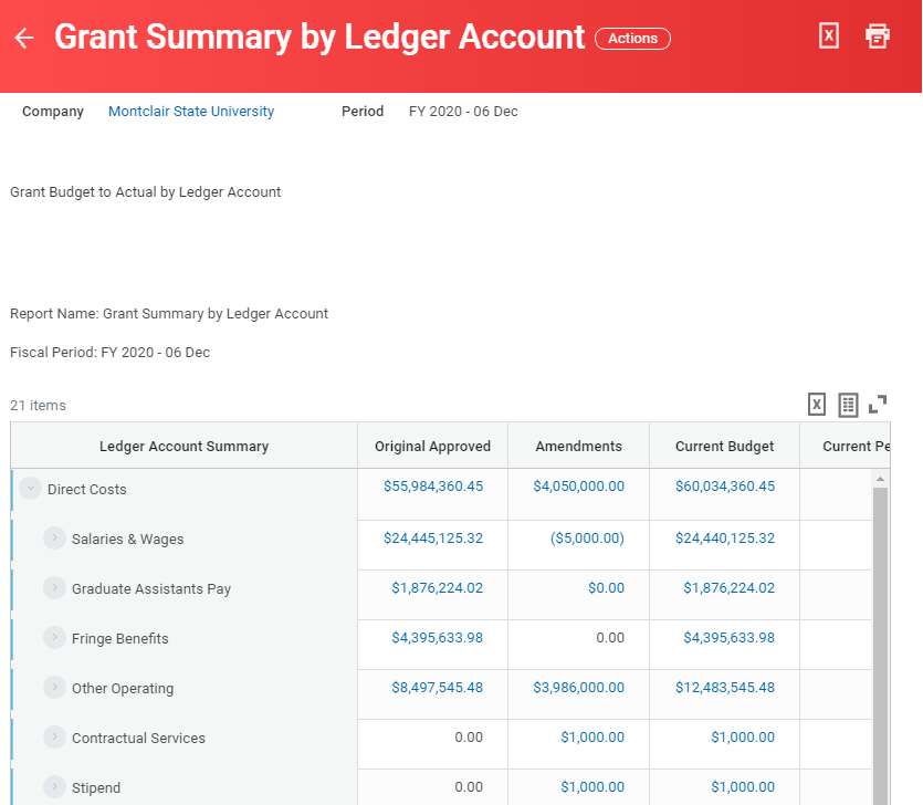 grant summary by ledger report