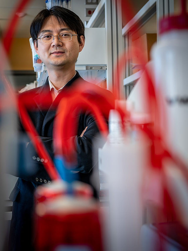 Inspired by his personal experiences with hurricanes, Yang Deng created a water treatment device that can be used following natural disasters.