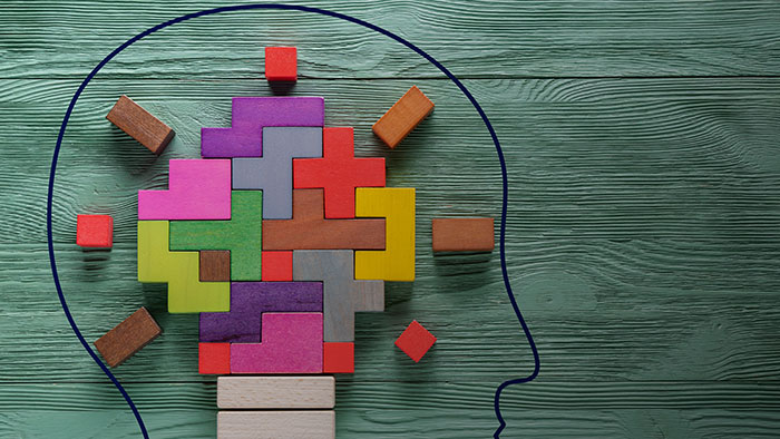 Diagram of head with brain made of blocks