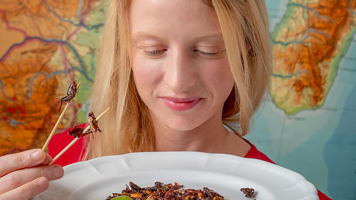 "Cortni Borgerson, seen here with a plate of grasshoppers, leads a program to farm the so-called ""bacon bugs"" in Madagascar to improve food security."