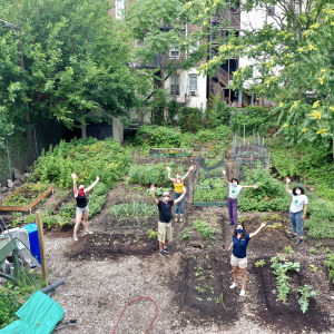Green Teams students working in a Newark Science and Sustainability community garden