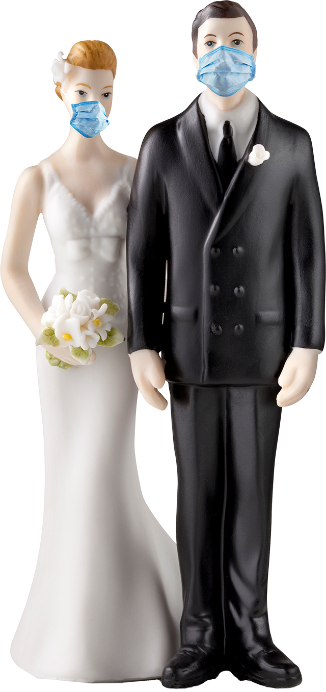 Bride and groom toys wearing masks