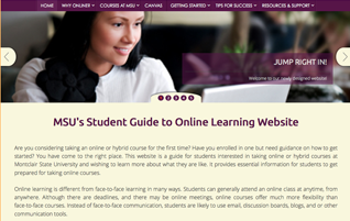Student website screenshot