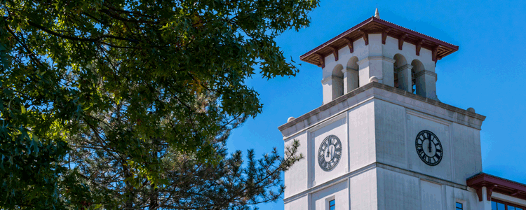 Picture of the University Hall clock tower.