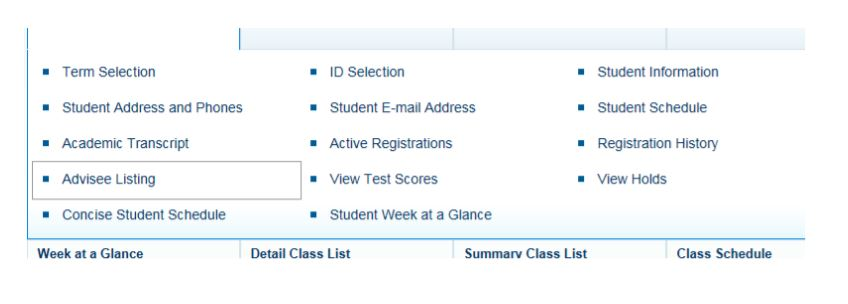 Screenshot of the Student Information menu in SSB.