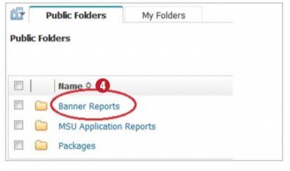 Screenshot of the Cognos Reporting Tool.