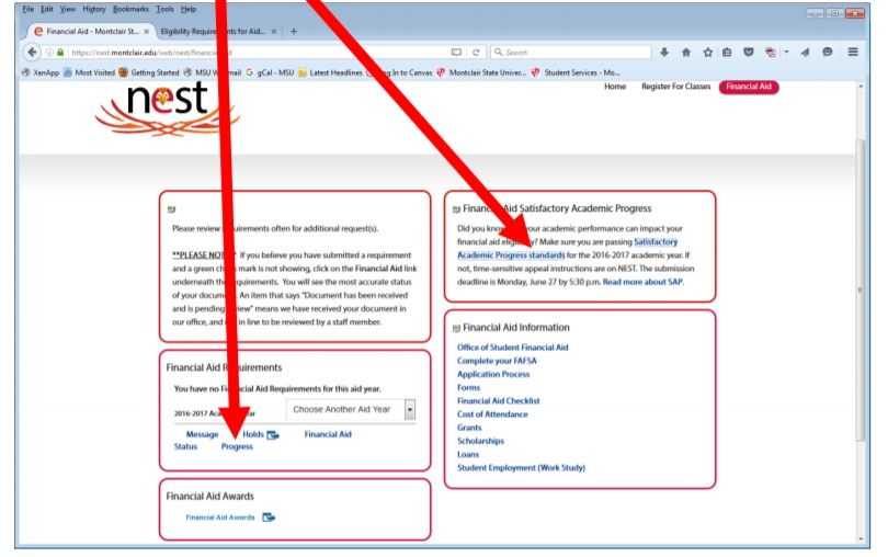 Screenshot of NEST Satisfactory Academic Progress process.