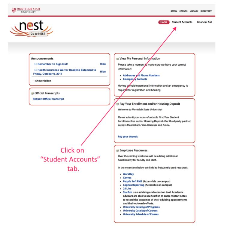 Screenshot of the NEST homescreen highlighting the Student Accounts tab.