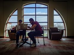 Two students studying together.