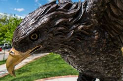 Close-up photo of Montclair State Red Hawk statue