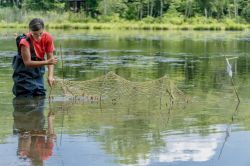 Photo of student collecting samples in lake.