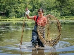Student from NJ School of Conservation wading through river holding net and sticks for Snapping Turtle Research.