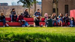 Photo of students in discussion in a class meeting outdoors.