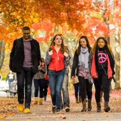 Students walk across campus on a colorful autumn day.