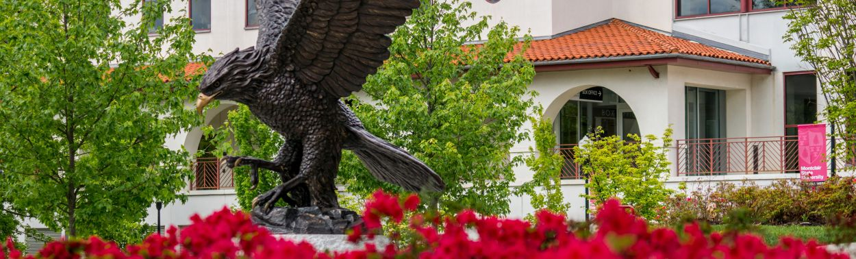 montclair state university undergraduate admissions essay See test scores and admissions information about montclair state university see how you compare to other montclair state university students.