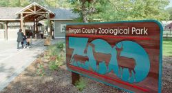 Feature image for Bergen County Zoo - Education Intern