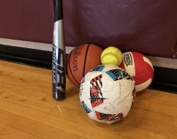 A volleyball, soccer ball, basketball, baseball and baseball bat laid together on the floor