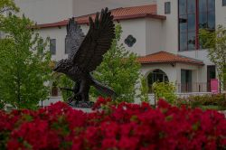 The Red Hawk Statue with some red flowers surrounding it.