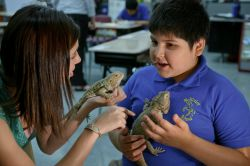 Photo of teacher holding lizards with young student.
