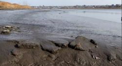 Feature image for CSAM Faculty Validate EPA's Hackensack River Contamination