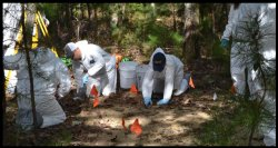 photo of forensic anthropologists at a crime scene