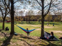 Picture of students sitting on hammocks on campus.