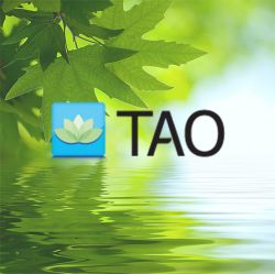 Logo for TAO Connect