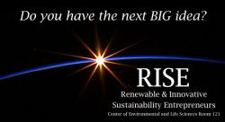 Feature image for Renewable & Innovative Sustainability Entrepreneurs
