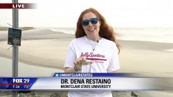 Dr. Restaino Fox29 jellyfish interview