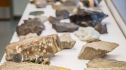 rock samples on table