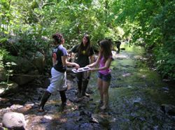 Students conducting research in river