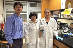 Dr. Yang Deng and students in lab