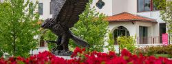 Photo of Bronze Red Hawk Statue in Spring