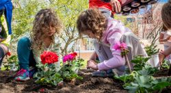 In honor of Earth Day, kindergarten and second-grade students from Bradford Elementary School plant flowers on the Montclair State University campus.