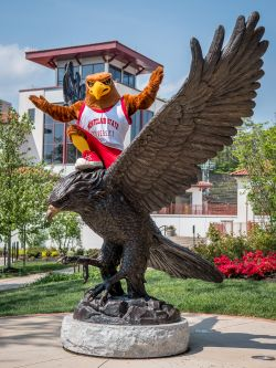 Rocky on the Red Hawk statue