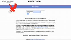 MSU FileHawk login page
