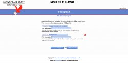 MSU FileHawk multifile upload
