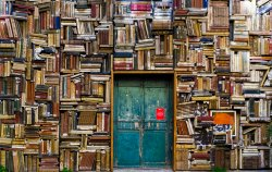 books crammed on shelves