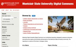 screenshot, MSU Digital Commons homepage
