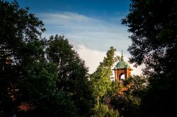 Dusky photo of campus belltower with trees in the foreground.