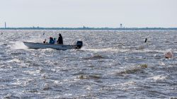 researchers on boat in Barnegat Bay