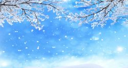 Winter scene with blue sky, white snowflakes and snow on tree branches.