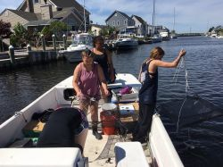 Three students on boat collecting marine data using nets.