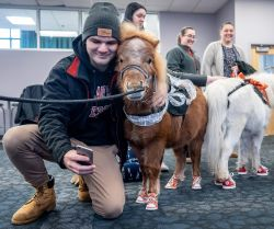 Student taking photo with arm around miniature horse wearing sneakers