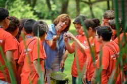 Teacher showing eco-explorers an animal in her hand