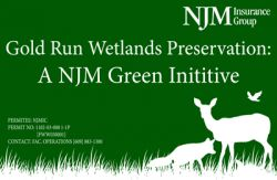 Gold Run Wetlands reservation: A NJM Green Initiative