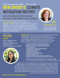 climate mitigation report flyer