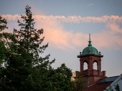 College Hall bell tower with a evergreen tree to the left and a slightly pinkish evening sky with clouds
