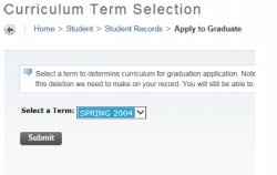 Screenshot of the Curriculum Term Selection page with Spring 2004 highlighted